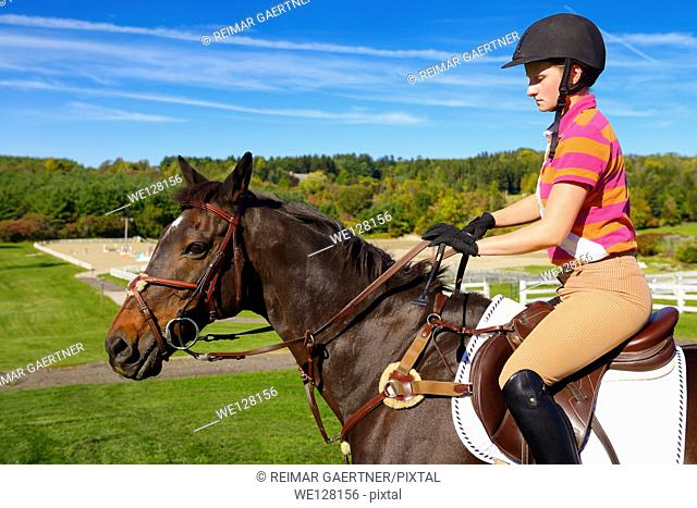 Young female rider mounted on a bay thoroughbred gelding horse going to training ring
