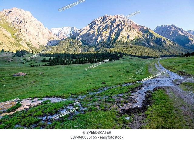 Brook flowing on mountain road, Tien Shan, Kyrgyzstan
