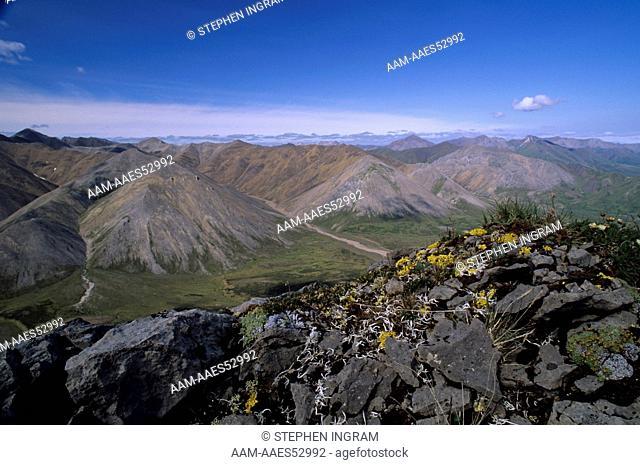 Limestone Peak w/ lichens in De Long Mts., Brooks Range, Noatak Natl Reserve, AK