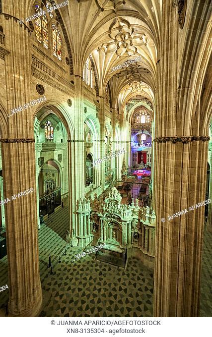 Cathedral of Salamanca at Night, Salamanca City, Spain, Europe