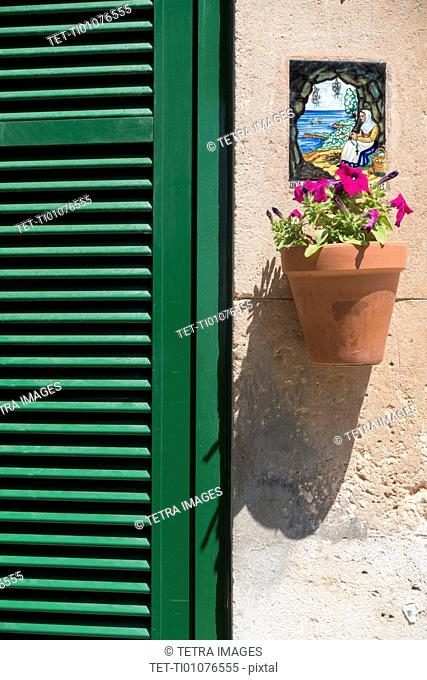 Potted flower hanging below ornate plaque