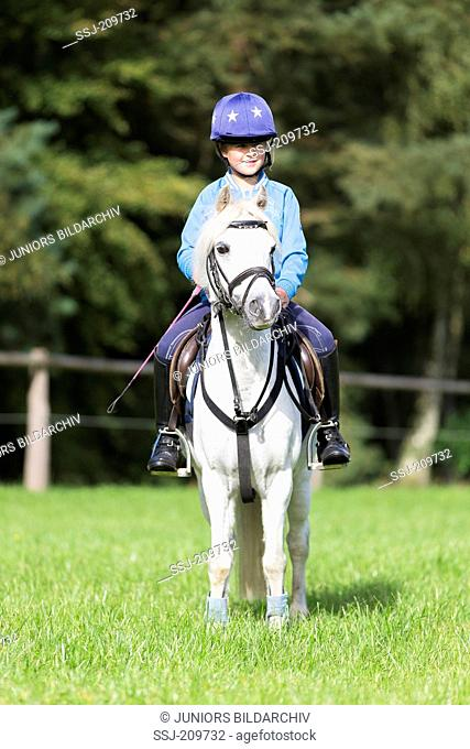 Welsh Mountain Pony, Section A. Girl on a gray pony, standing. Germany
