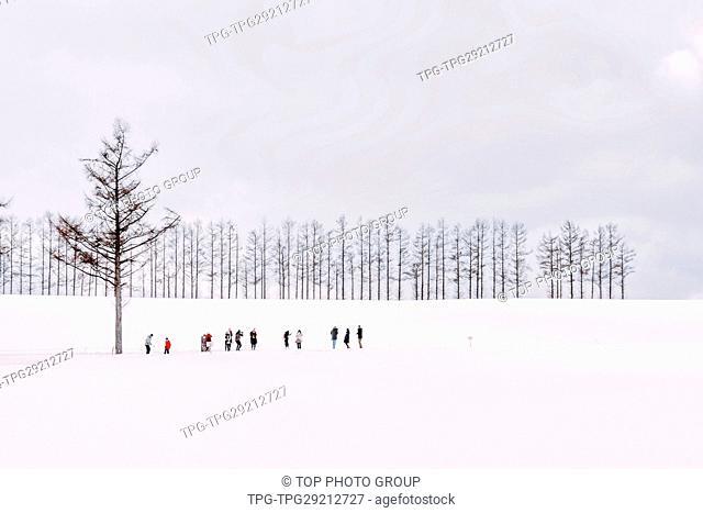 White Biei-Cho;Hokkaido;Japan