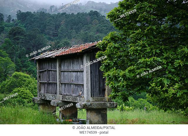 """An old """"""""espigueiro"""""""" , a small granary used to save cereal. Portugal"""