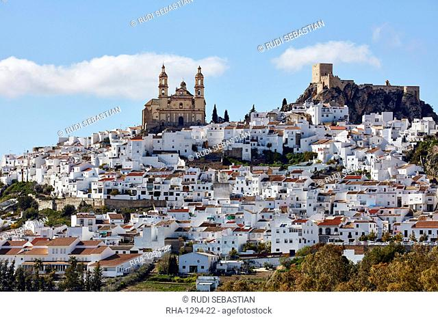 View of Olvera, Andalucia, Spain, Europe