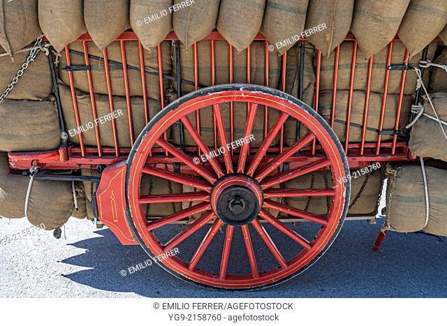 Antique cart. Anglesola. LLeida. Spain