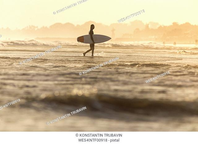 Indonesia, Bali, surfer carrying his surfboard into the sea at sunset