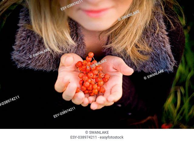 Red rowan berries in girl's hands