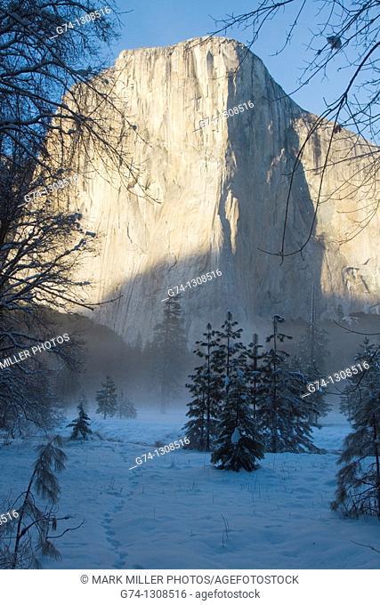 El Capitan in fresh winter snow,Yosemite National Park, California, USA