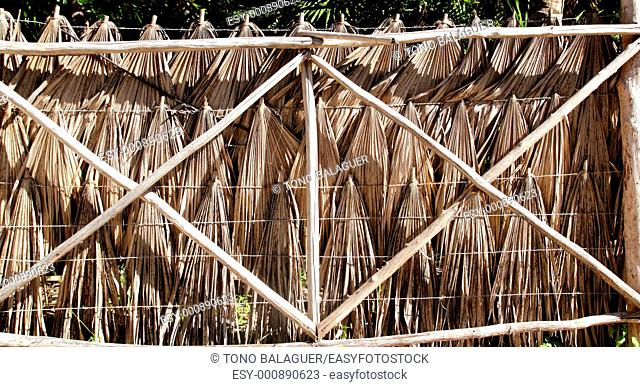 tropical fence with palm tree leaves and wood trunks