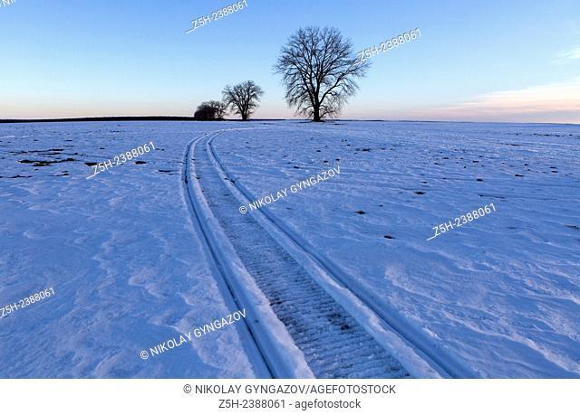 Russia. Belgorod region. Snowy expanses
