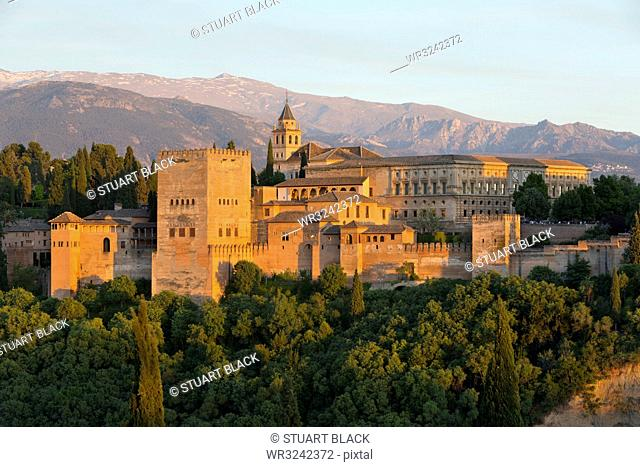 The Alhambra, UNESCO World Heritage Site, and Sierra Nevada mountains in evening light from Mirador de San Nicolas, Granada, Andalucia, Spain, Europe