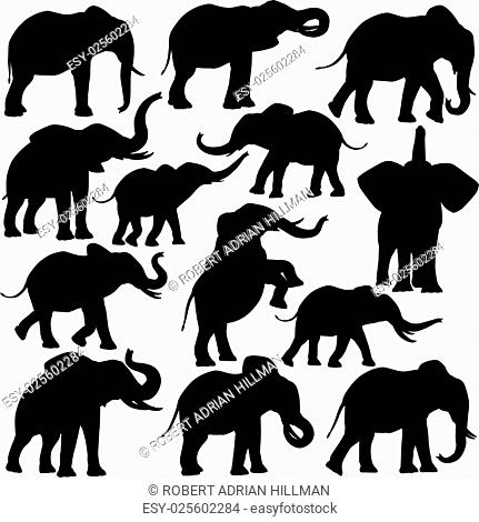 Set of editable vector silhouettes of African elepants in various poses