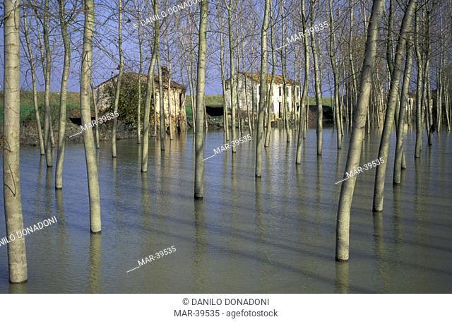 flooded golena of po river, canalnuovo, italy