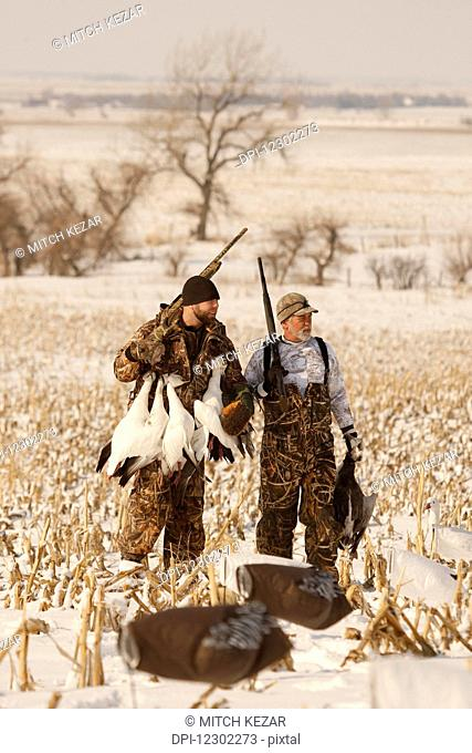 Snow Goose Hunters With Dead Snow Geese