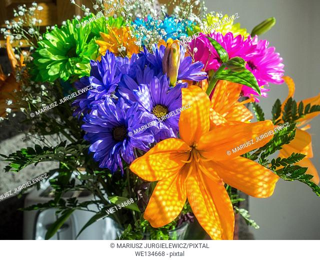 Bouquet of various vividly colorful flowers on a display