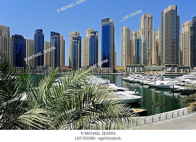 Skyscrapers at Dubai Marina, Jumeirah, Dubai, United Arab Emirates