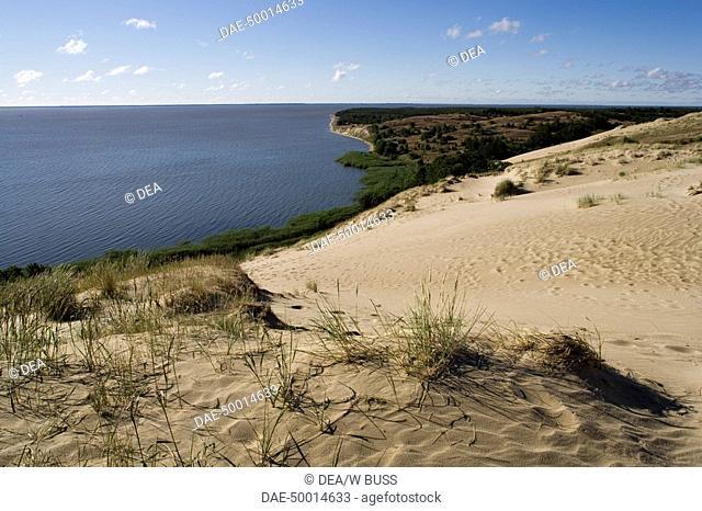 Lithuania - Klaipéda County - Curonian Spit (UNESCO World Heritage List, 2000) - Vecekrugas. The Grey dune (h. 67.2 m)