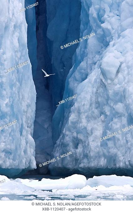 Views of the Monaco Glacier on the northern side of Spitsbergen in the Svalbard Archipelago, Norway