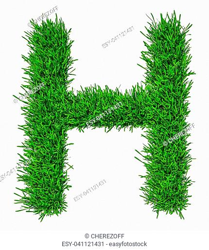 d2f6b8523 Letter of grass alphabet. Grass letter H isolated on white background. 3d  illustration