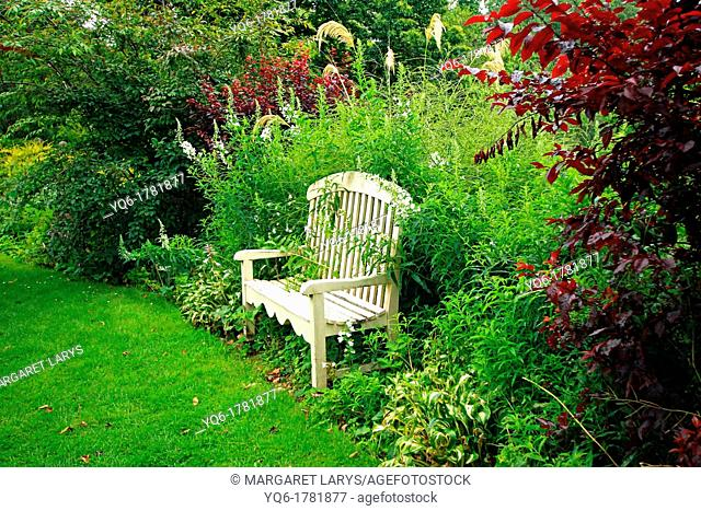 Beautiful vintage wooden bench in the old garden. Scotland, United Kingdom