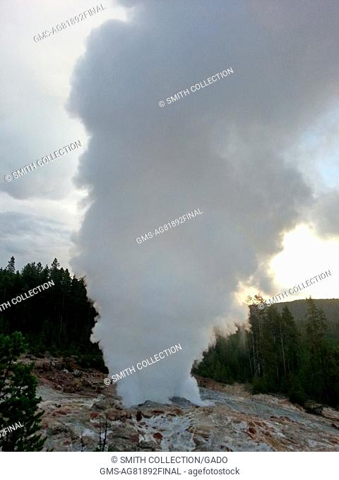 The steam phase of a Steamboat Geyser eruption, Yellowstone National Park, Wyoming, July 31, 2013. Image courtesy Kalsang Phuntsok/Yellowstone National Park