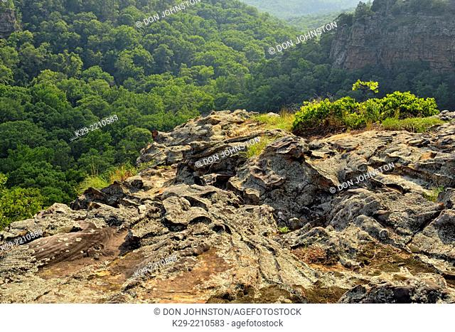 Rocks and forest overlooking Cedar Creek Canyon, Petit Jean State Park, Arkansas, USA