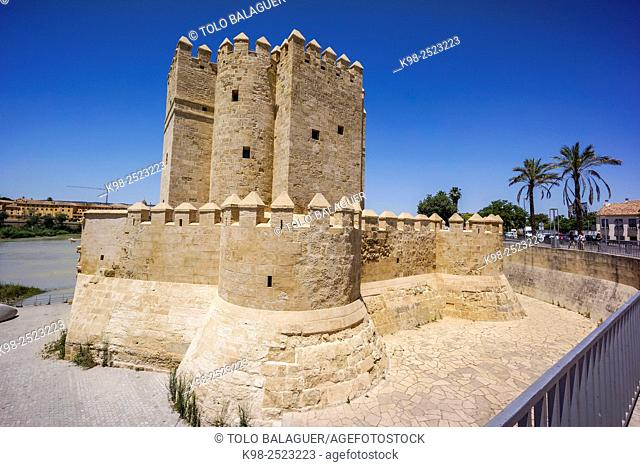 Spain, Andalucia, Cordoba, Calahorra Tower on sunny day