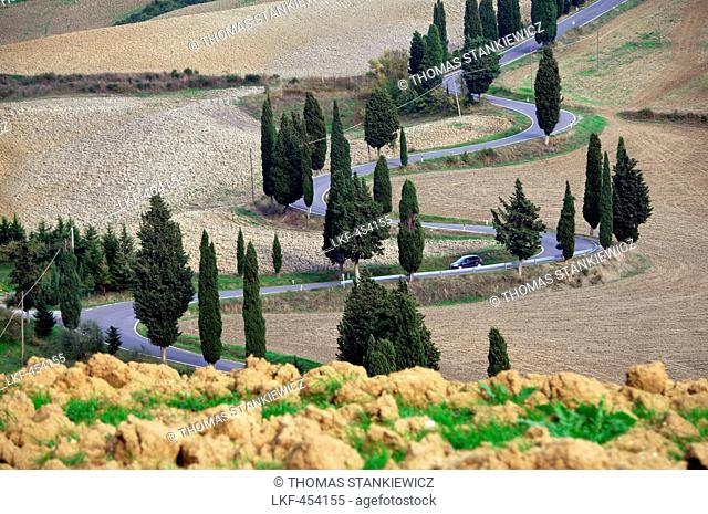 Country road at Monticchiello near Pienza, Siena, South Tuscany, Tuscany, Italy