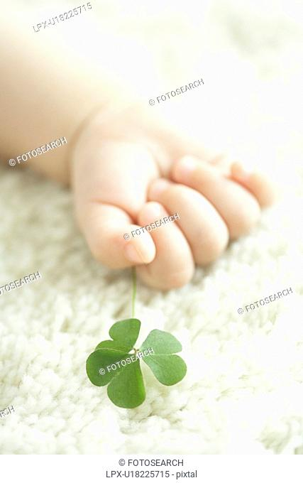 Baby holding clover leaf