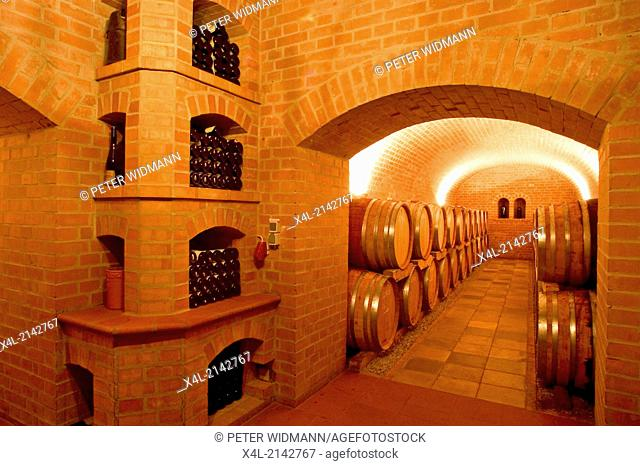 Austria winery Moser barrique wine cellar