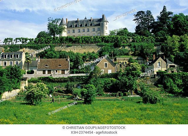 Chateau Moncontour, Vouvray, Loire valley near Tours, Indre-et-Loire department, Centre region, France, Europe