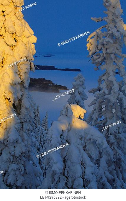 The wintery scenery at Koli