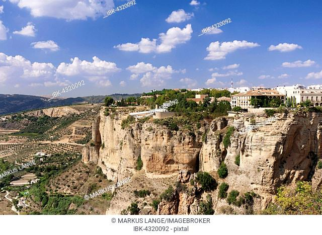Asa de la Caldera, Tajo Gorge, Ronda, Malaga province, Andalucía, Spain