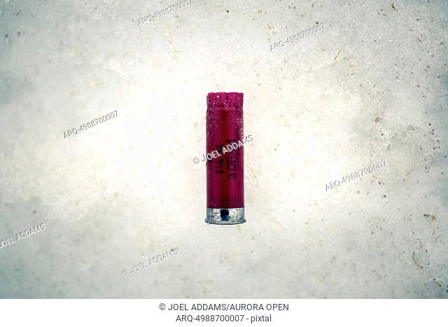 A used shotgun shell sits abandoned in the snow