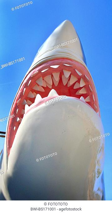 great white shark (Carcharodon carcharias, Carcharodon rondeletii), mouth, dummy on a children?s playground