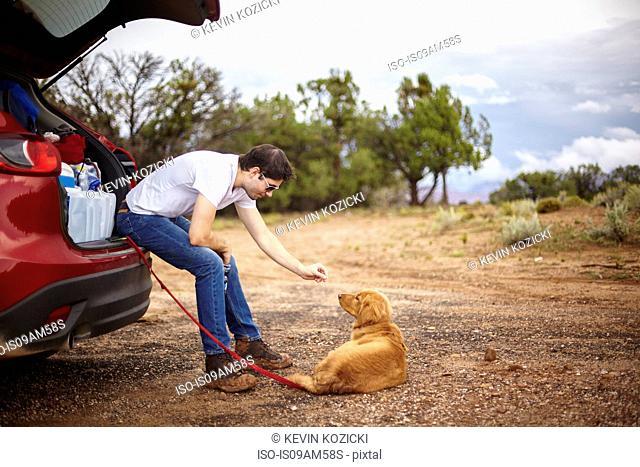 Man playing with dog behind car, Zion, Utah, USA