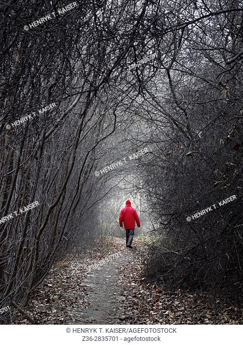 Man in red walks through empty road and bare trees