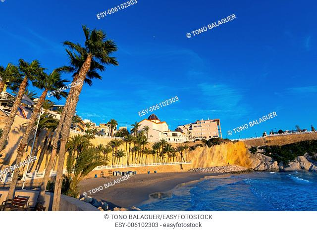 Benidorm Alicante playa del Mal Pas beach at sunset in Spain with palm trees