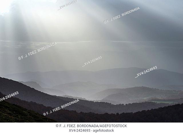 View point of Roncesvalles and forest from Ibañeta area. Navarre Pyrenees, Spain