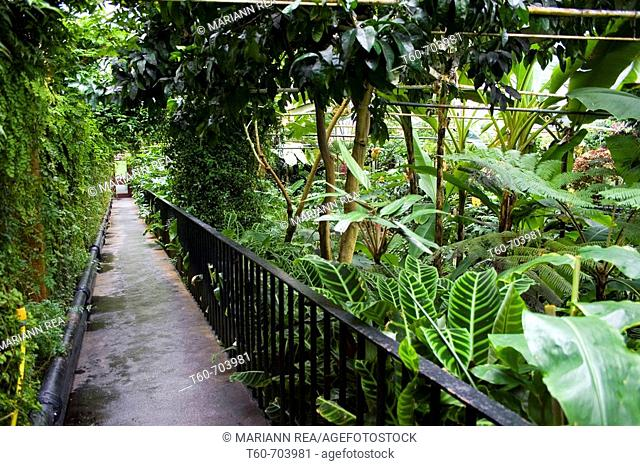 Botanic gardens in Belfast, Northern Ireland