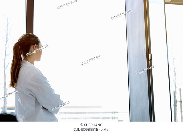 Female doctor looking out of window, rear view