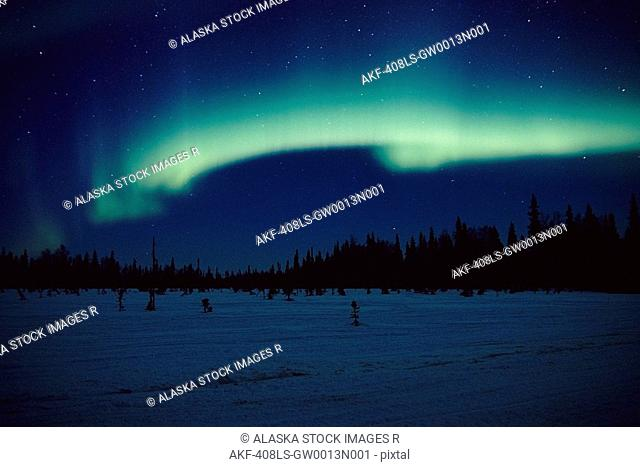 Northern Lights over Black Spruce forest during Winter in Southcentral Alaska