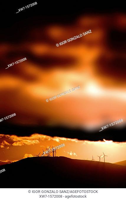 Wind energy at the sunset in León Spain. Village of El Ganso León. Camino de Santiago. Pilgrimage way