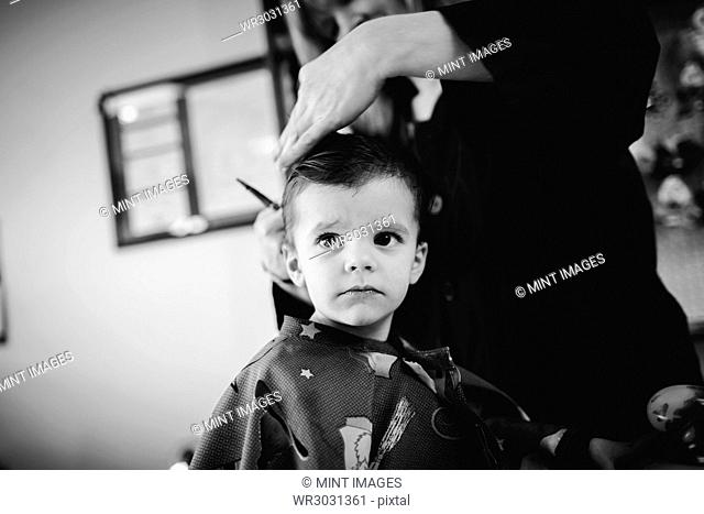 Young boy sitting in a barber's chair, getting his hair cut