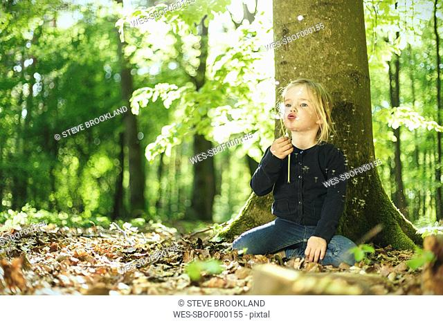 Girl in forest blowing blowball