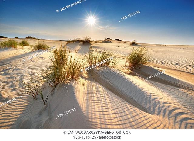 Moving Dunes in Slowinski National Park, Pomerania, Poland, Europe
