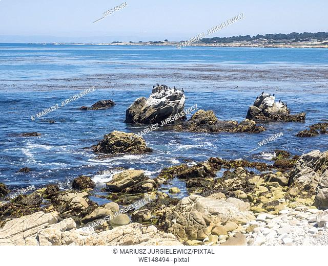 Point Joe on the famous 17 mile drive is a point where seven ocean currents meet. Several ships have met disaster on this rugged point