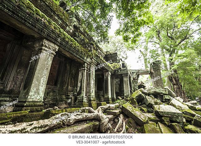 Ruins of Ta Prohm in Angkor compound (Siem Reap Province, Cambodia)