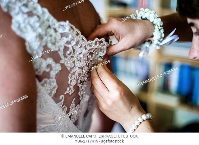 Buttons of the brides dress is fastened on the back, dressing of the bride